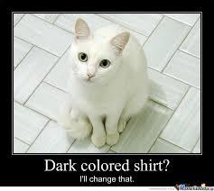 Stupid Cat Meme - stupid cat fur by pinklion8 meme center