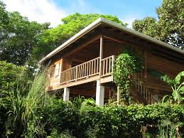 Small Eco Houses Gardening Great Tropical Houses In Urban Environment Wit Small
