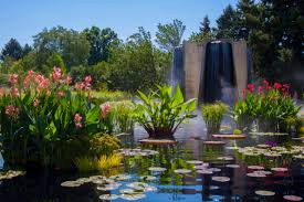 landscaping denver co what does a landscape architect design