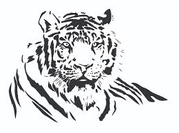 both black and white tiger vector free vector 4vector