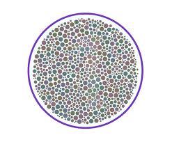 enchroma color blindness test enchroma