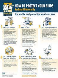 order poultry information u2014 indiana state poultry association
