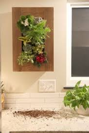 indoor hanging wall garden planter rectangle garden ideas