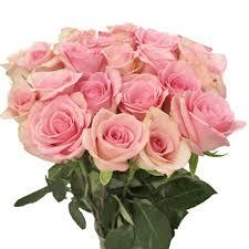 wholesale flowers orlando fiftyflowers light orlando pink flowers