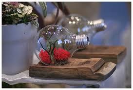 floral design and terrarium classes in denver bella calla