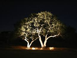 outdoor lights for trees outdoor ideas