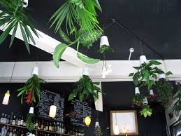 Hanging Decor From Ceiling by 25 Ways Of Including Indoor Plants Into Your Home U0027s Décor