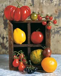 Natural Pesticides For Vegetable Gardens by Vegetable Garden Glossary Martha Stewart