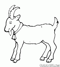 coloring page sheep with a bell