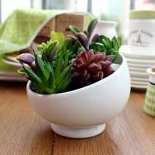 small white ceramic flower pot indoor succulent planter vase
