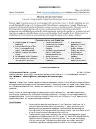 Resume For Supply Chain Executive Download Global Vp Engineering Electronics In Usa Resume