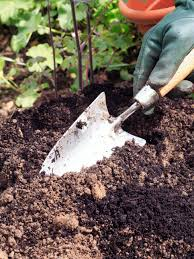 types of garden tools and equipment hgtv