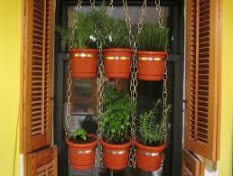 hanging window herb garden home ideas pinterest herbs garden