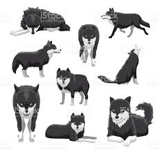 black and white wolf vector illustration stock vector