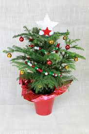 real mini christmas tree with lights 30 beautiful christmas tree garland decoration ideas christmas