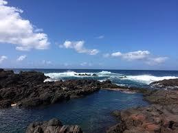 brown rocks beside ocean with bubble wave under blue sky free