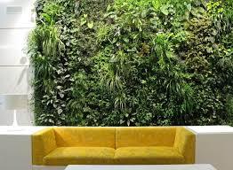 interieur et canapé mur végétal intérieur et extérieur en 21 photos magnifiques canapé