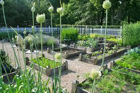 Ideal Vegetable Garden Layout Fall Gardening Beds Vegetable Garden Photos Gallery Of Simple