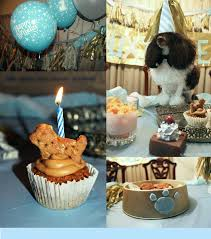 dog birthday party 414 best dog birthday party images on dog birthday