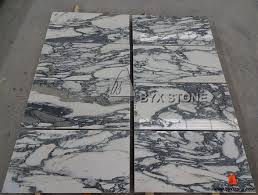 arabescato corchia white marble tile with black veins