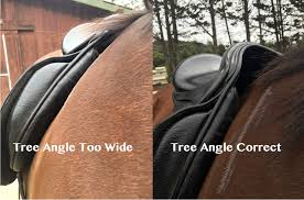 Horse Saddle by Why Does My Saddle Slide Forward Over The Shoulder Saddlery