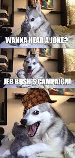 Dog Jokes Meme - bad pun dog meme imgflip