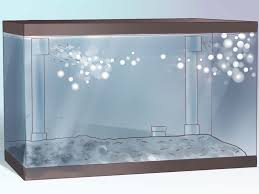 how to create an undergravel filter for your fishtank 9 steps