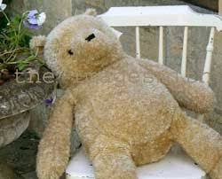 Bear On The Chair Teddy Bear Digital Photographs To Buy From The Imagesmith