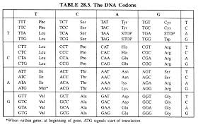 genetic code meaning types and properties