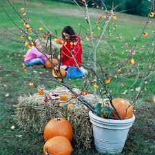 15 activities to get your kids in the garden this fall