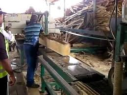 Wood Machines In South Africa by Wood Mizer Small Log Line In Action In South Africa Youtube
