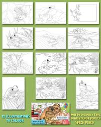 frogs colouring pages book