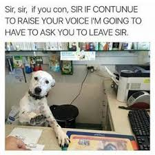 Work Memes Funny - dogs at work memes fridayfrivolity munofore