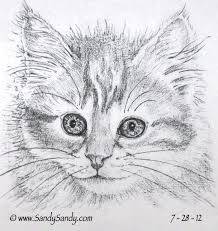 drawing everyday a kitten a horse and two hummingbird drawings