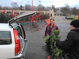 real or artificial buying christmas tree u0027a personal preference