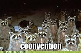 Meme Generator Raccoon - puns raccoon funny puns pun pictures cheezburger