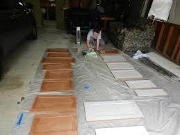 nuvo cabinet paint thenomadicnurse