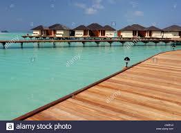 maldives north male atoll lankanfinolhu island paradise island