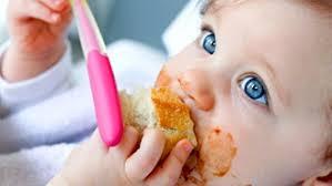 cuisiner pour bebe cuisiner pour bébé