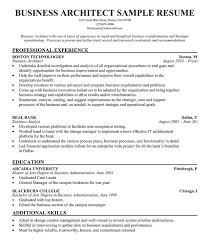 technical architect cv sample work experience key skills