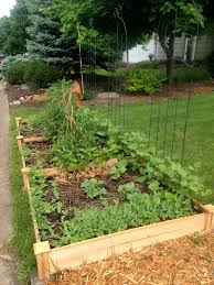 seed starting suburban garden zone 4