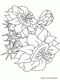 flower page printable coloring sheets printable saguaroblossom