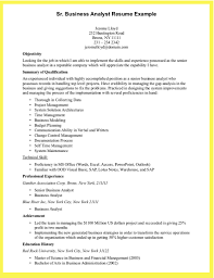 Data Analyst Resume Sample by Business Business Data Analyst Resume