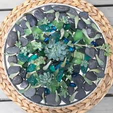 a how to propagate succulents so easy jackie can u0027t blog