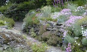 rock garden the botanic garden of smith college
