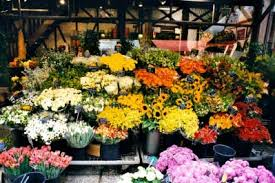flowers san francisco san francisco flowers and florist reviews