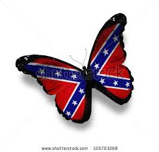 confederate rebel flag butterfly isolated on white stock photo