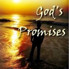 god s promises in the bible android apps on play