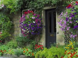 the english cottage an english cottage garden isn t for everybody dengarden