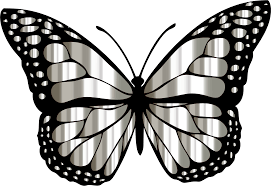 clipart monarch butterfly 2 variation 8